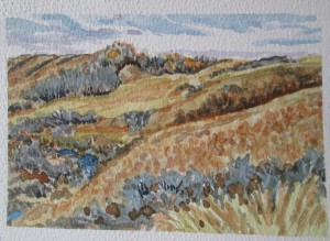 Pheasant Creek Coulee, watercolour. SOLD