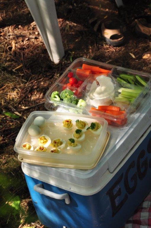 more picnic