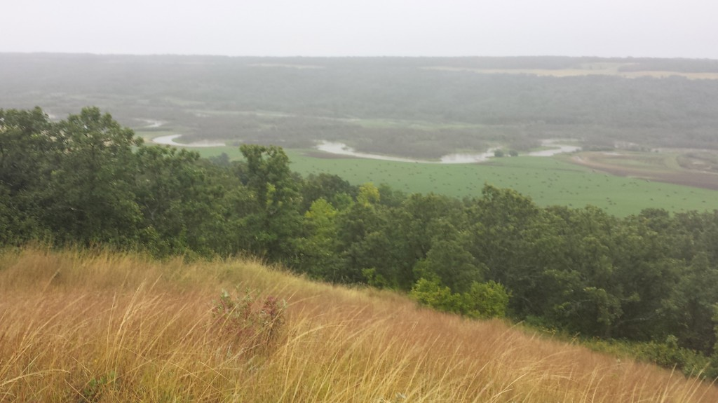 the view from the top of the hill - misty moiety weather- at valley View Farm (well named)