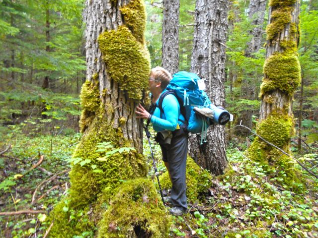 """""""The land is the best medicine."""" Breathing in the earthy smell of moss."""