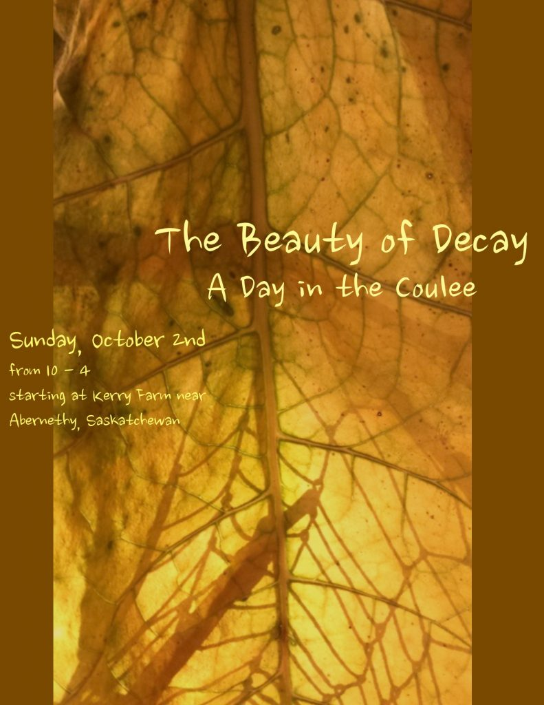 the-beauty-of-decay-october-2016